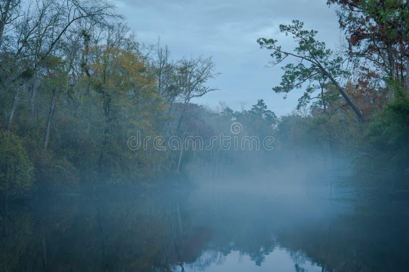 Niebla en el río de Abita fotos de archivo