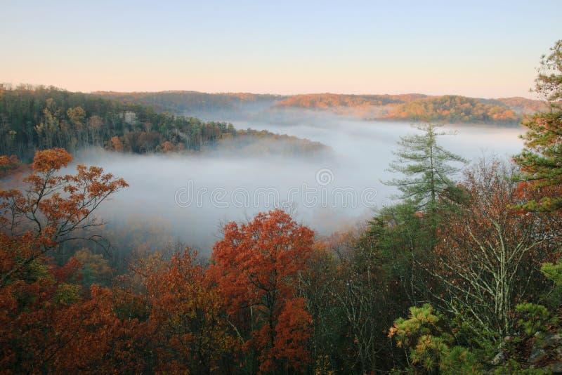 La niebla llenó el valle foto de archivo