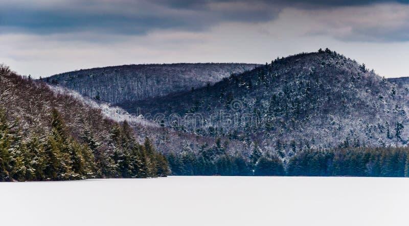 La nieve y el hielo cubrieron el funcionamiento largo circundante Reservo del pino de las montañas fotografía de archivo libre de regalías