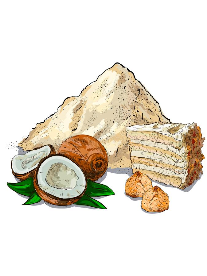 La noce di cocco si sfalda prodotti del grano della farina per la vostra progettazione illustrazione di stock