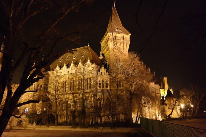 La noche sceen del castillo de Vajdahunyad, Budapest, Hungría fotografía de archivo