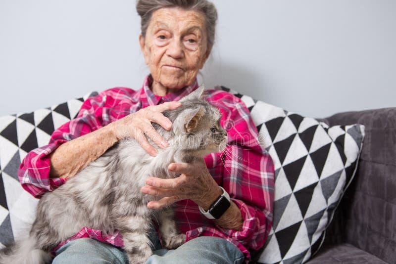 Anziana Che Accarezza Il Suo Gatto Fotografia Stock ...