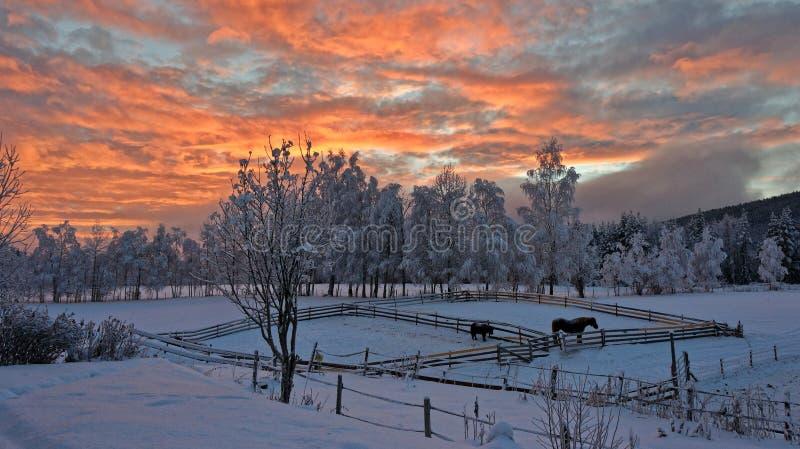 La Norvegia in inverno fotografie stock libere da diritti