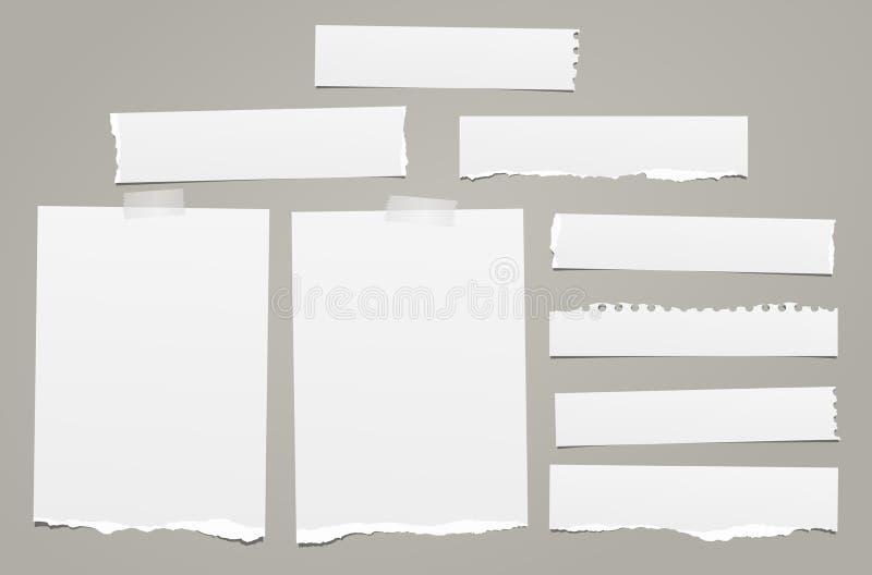La nota rasgada blanca, pedazos de papel del cuaderno con los bordes rasgados se pegó en backgroud gris Ilustración del vector ilustración del vector