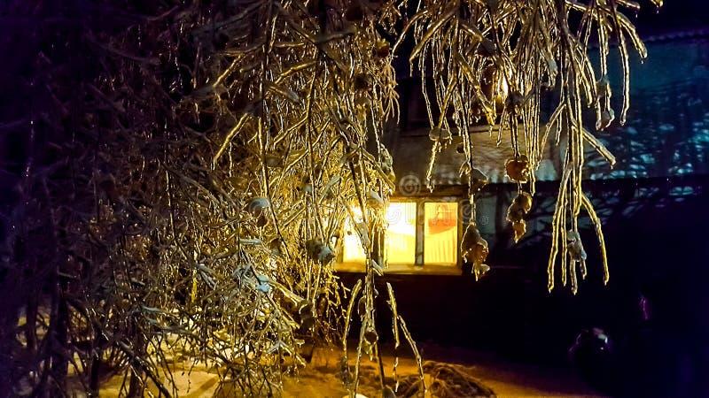 La notte gelida fotografia stock libera da diritti