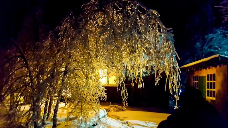 La notte gelida immagini stock libere da diritti