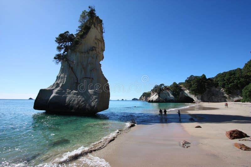 la Nouvelle Zélande photographie stock libre de droits
