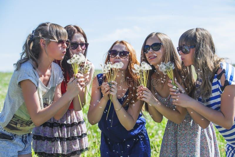 La novia de las muchachas infla las semillas del diente de león foto de archivo