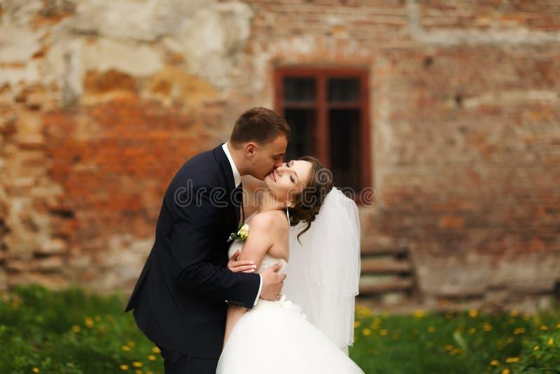 La novia disfruta de un beso blando en las manos del novio imágenes de archivo libres de regalías