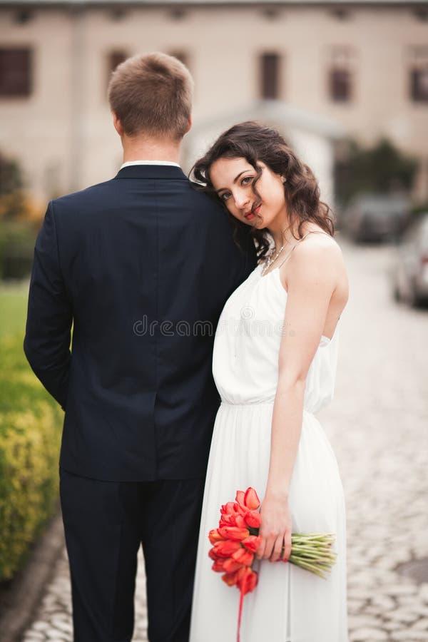La novia hermosa se inclinó encendido detrás del novio foto de archivo libre de regalías