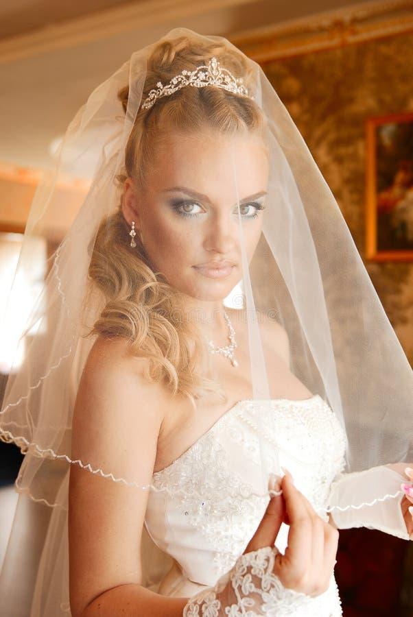 La novia joven viste velo fotografía de archivo libre de regalías
