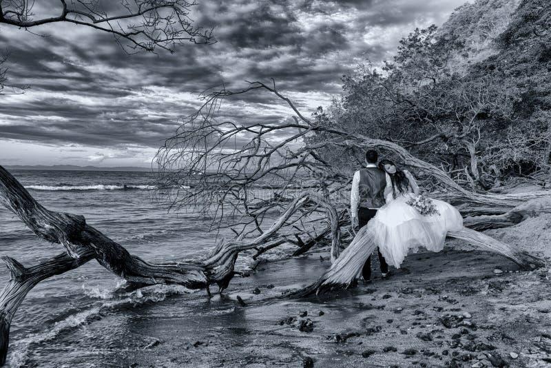 La novia y el novio consiguen casados en una playa en Costa Rica tropical imagen de archivo