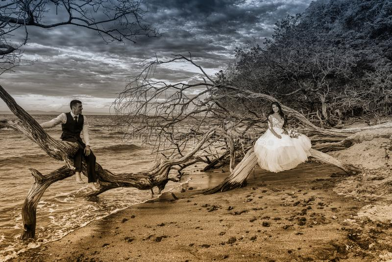 La novia y el novio consiguen casados en una playa en Costa Rica tropical fotografía de archivo libre de regalías