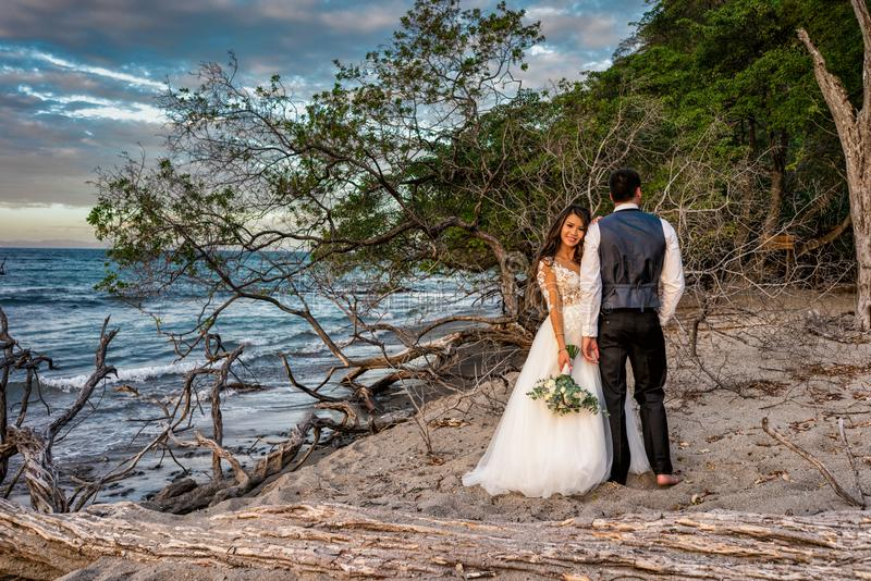 La novia y el novio consiguen casados en una playa en Costa Rica tropical imágenes de archivo libres de regalías