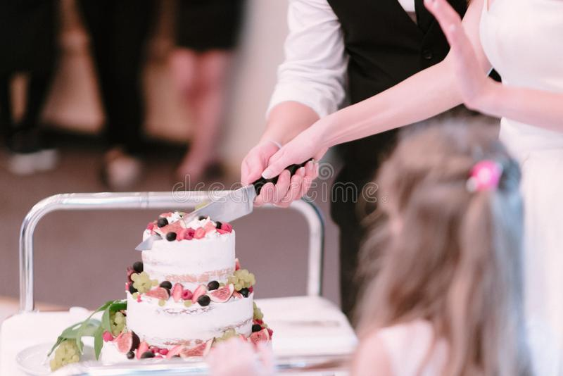 La novia y el novio cortaron el cierre del pastel de bodas fotos de archivo libres de regalías