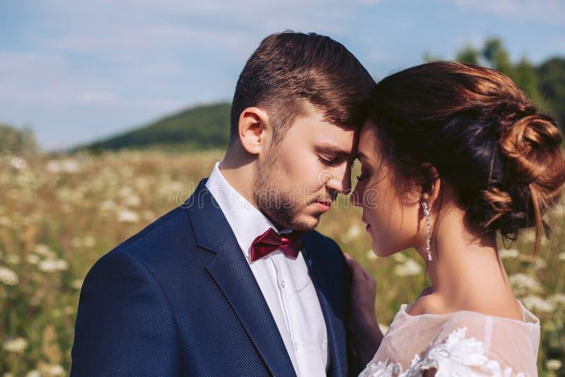 La novia y el novio en el día de boda se están colocando en la naturaleza de tocar cada otros fotografía de archivo