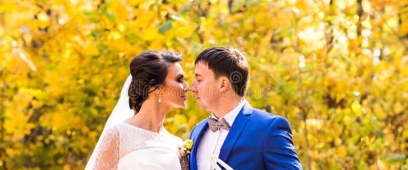 La novia y el novio en otoño parquean vida del amor imagen de archivo