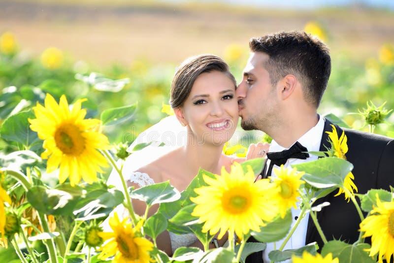 La novia y el novio en una tenencia ligera hermosa abrazan fotografía de archivo libre de regalías