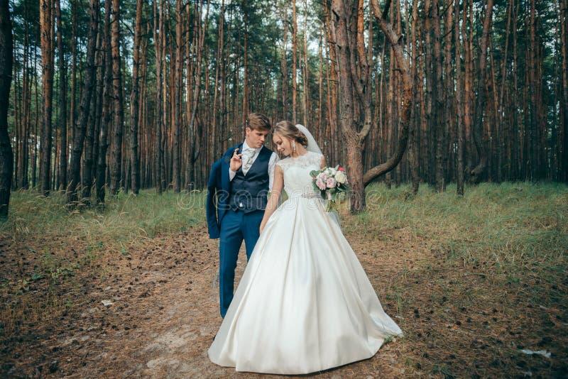 La novia y el novio en vestidos de boda en fondo natural Día de boda Los recienes casados están caminando a través del bosque fotos de archivo
