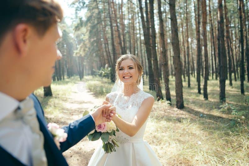 La novia y el novio en vestidos de boda en fondo natural Día de boda Los recienes casados están caminando a través del bosque imágenes de archivo libres de regalías