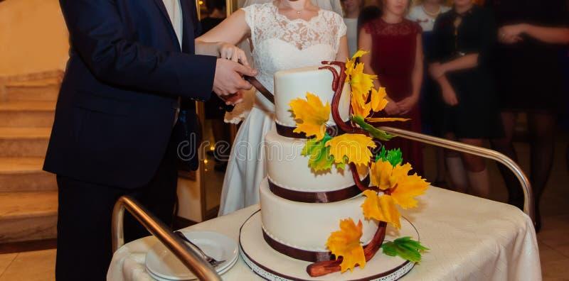 La novia y el novio felices cortaron un pastel de bodas foto de archivo