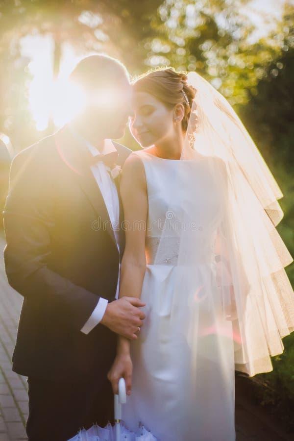 La novia y el novio hechos excursionismo imágenes de archivo libres de regalías