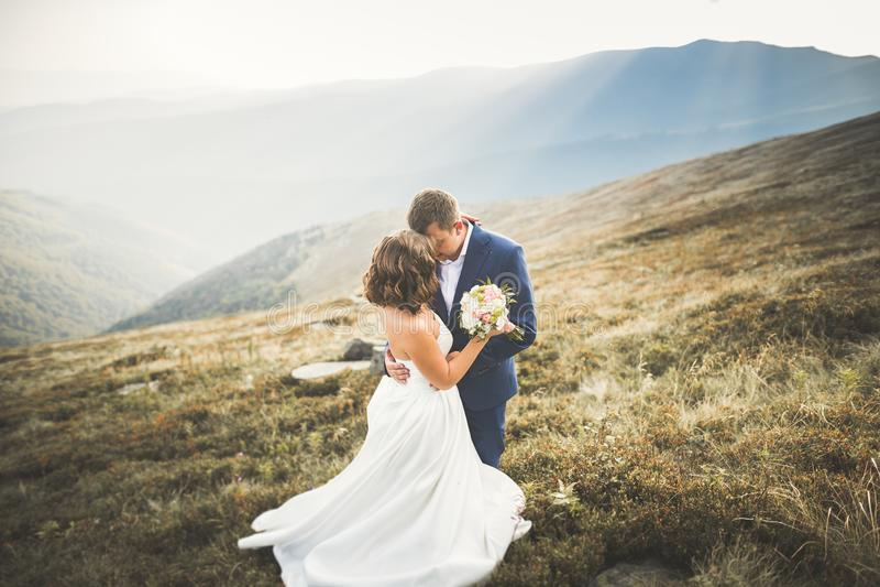 La novia y el novio hermosos felices de los pares de la boda en el día de boda al aire libre en las montañas oscilan Pares de la  fotografía de archivo libre de regalías