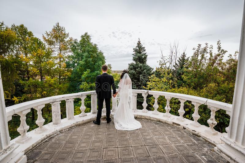 La novia y el novio que llevan a cabo las manos foto de archivo