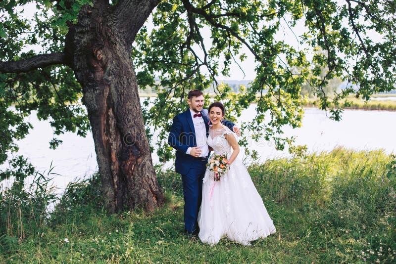 La novia y el novio ríen debajo de un árbol grande en la orilla del río fotografía de archivo libre de regalías
