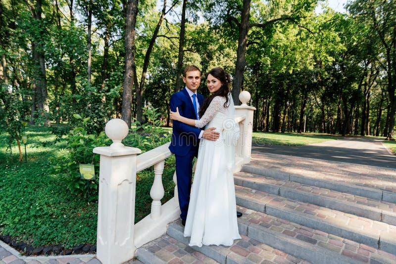 La novia y el novio se colocan en las escaleras en el parque El novio abraza a la novia Pares de la boda en amor en el día del we imagen de archivo libre de regalías
