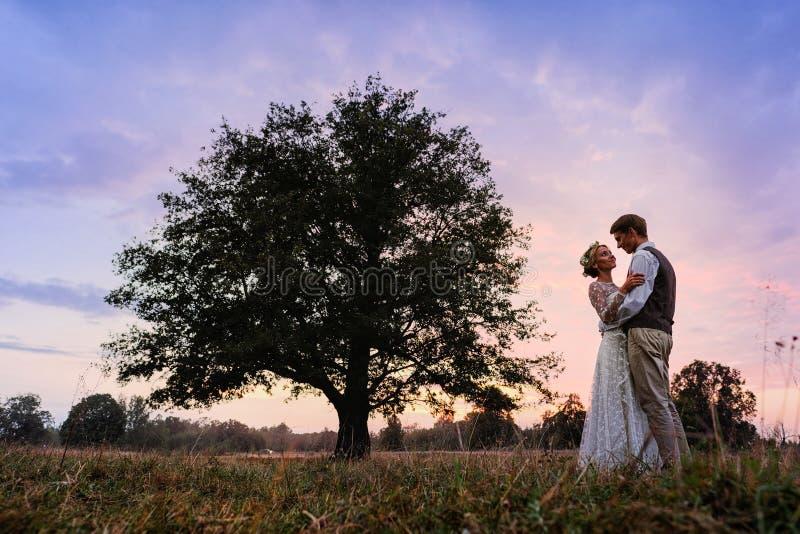 La novia y el novio se están colocando al lado de un árbol grande, después de la ceremonia de boda Foto de la silueta en colores  imagen de archivo
