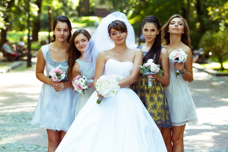 La novia y los bridsmaids miran la presentación agradable en el parque fotografía de archivo