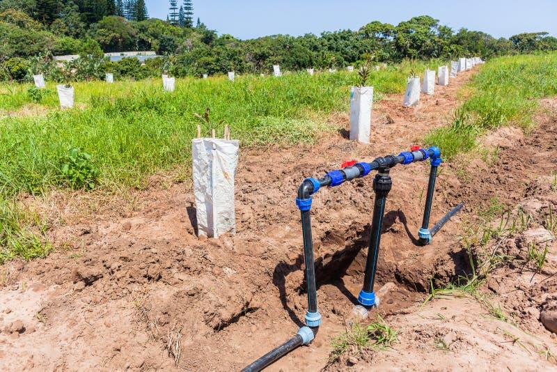 La nueva agua de las tierras de labrantío instala tubos la instalación de la irrigación de las válvulas foto de archivo libre de regalías