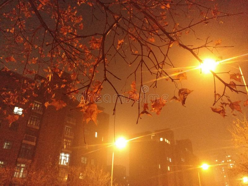 La nuit dans Pékin en automne, bien que belle, est pleine de la brume photos libres de droits