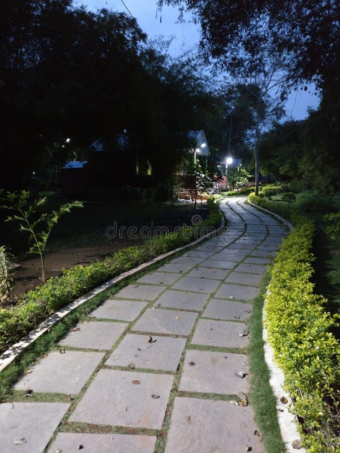 La nuit vue de la station de vacances de forêt de nalamala images libres de droits