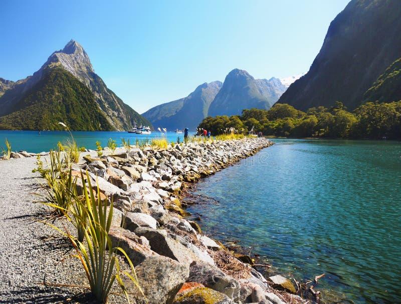 La Nuova Zelanda, paesaggio scenico del fiordo, Milford Sound fotografia stock libera da diritti