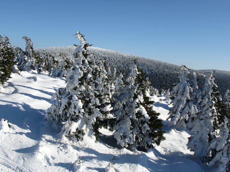 La opinión del invierno de un pico foto de archivo