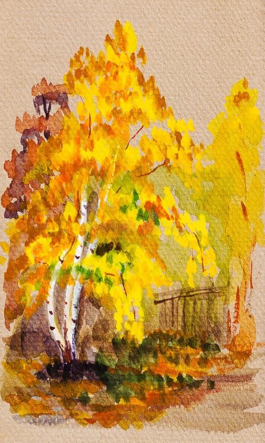 La opinión del otoño con amarillo deja el abedul libre illustration