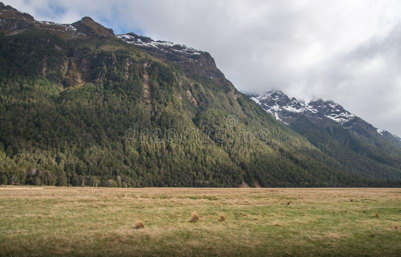 La opinión del paisaje del valle de Eglinton el paisaje espectacular en el camino a Milford Sound en la isla del sur de Nueva Zel imágenes de archivo libres de regalías