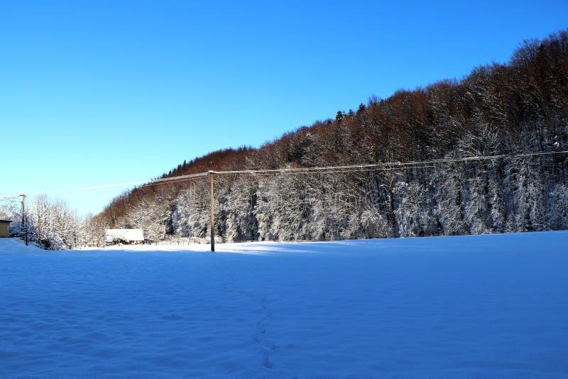 La opinión pacífica sobre el bosque, línea eléctrica y así sucesivamente fotos de archivo libres de regalías