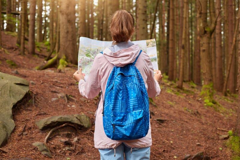 La opinión trasera el viajero delgado con vaqueros que llevaban de la cola de potro, mochila azul, subió chaqueta, mirando el map fotos de archivo