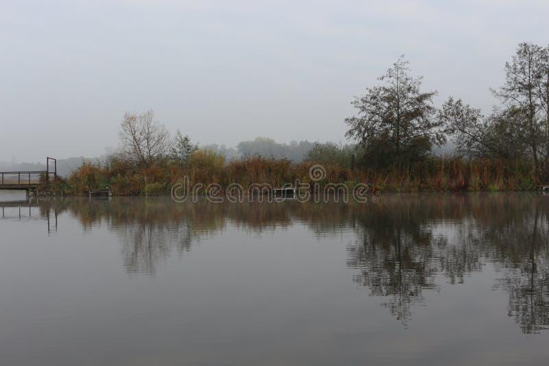 La orilla del lago del bosque es hermosa en otoño temprano foto de archivo
