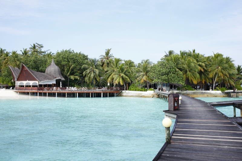 La orilla en una playa del centro turístico en Maldivas imagen de archivo libre de regalías