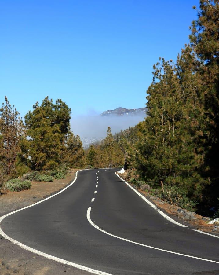 Free La Orotava City On Tenerife Royalty Free Stock Images - 23514349