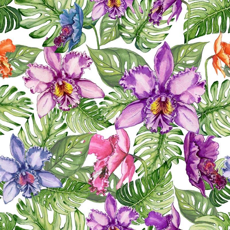 La orquídea hermosa florece y el monstera se va en el fondo blanco Estampado de flores tropical inconsútil Pintura de la acuarela ilustración del vector