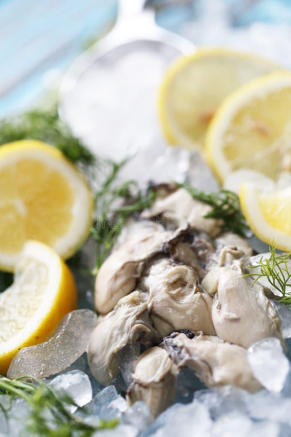 La ostra fresca con el limón y el coriandro Es menú para sano imágenes de archivo libres de regalías