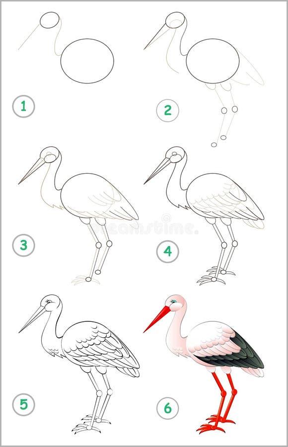 La página muestra cómo aprender paso a paso dibujar una cigüeña Habilidades de los niños que se convierten para dibujar y colorea libre illustration