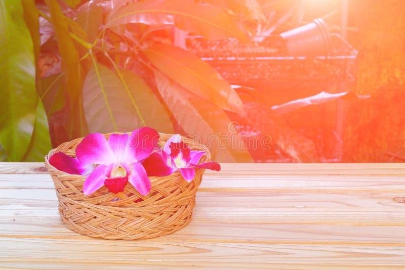 La púrpura de la orquídea todavía florece vida del balneario del concepto en cesta y tono ligero de la puesta del sol imagen de archivo