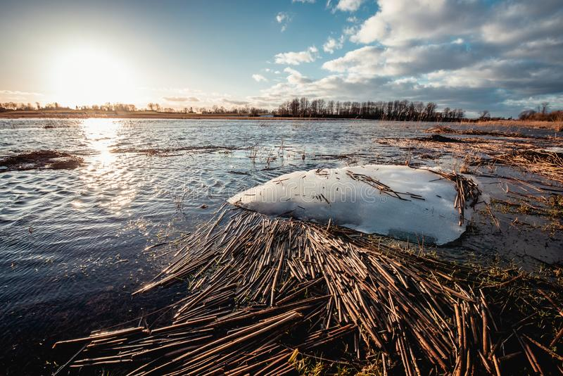 La pace di ghiaccio di fusione che galleggia nel fiume sommerso della molla immagine stock