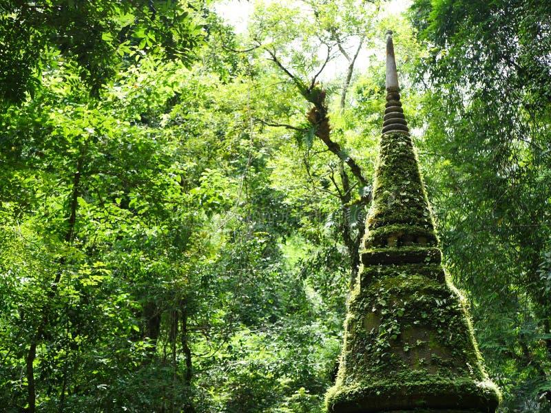 La pagoda images libres de droits